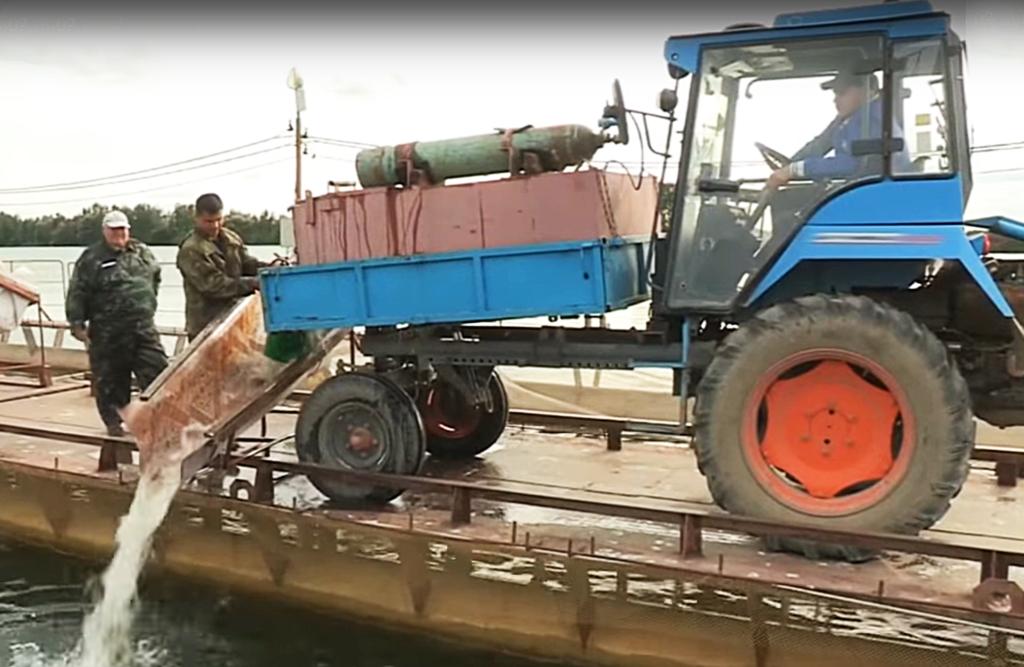 Самоходные шасси АГРОМАШ служат рыбоводам